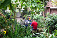 Students find a quite place to study in the Benson's Building Greenhouse.