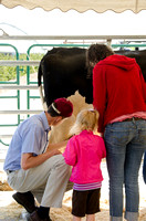 A professor helping a mother and child learn how to milk a cow at BYU-Idaho's first Ag Days