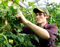 A student works in the Horticulture greenhouse next to the Benson Building.