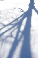 A shadow of a tree in the snow on the BYU-Idaho campus.