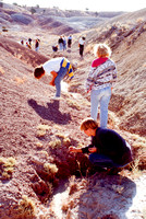 Student study the geologic features at Dinosaurland.