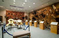 Wildlife Exhibit in the Ezra Taft Benson Building