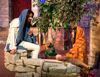 A narrative scriptural presentation of events of the New Testament that honors and proclaims the divine nature, mission and reality of our Savior Jesus Christ. Journey with us back in time to those da