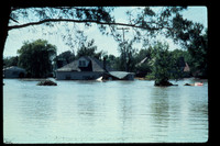 Flooded House 1976