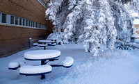 picnic tables near the David O. Mckay library
