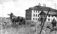Spori Building horse and plow 1915