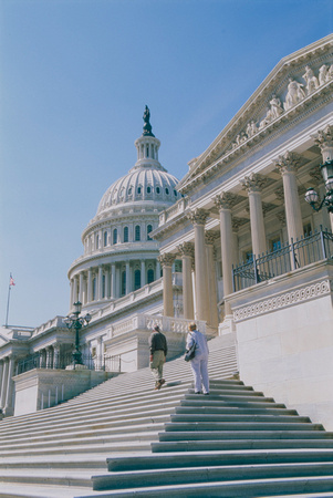 The United States Capitol Building in Washington D.C.