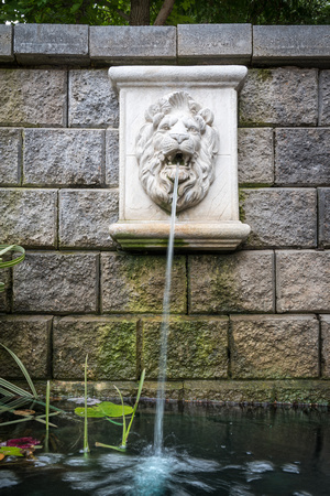 A lion water fountain in the Ricks Gardens. 2017