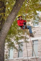 Students assist the campus arborist in keeping trees trimmed.