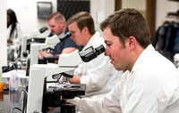 Students work in Brother Griffith's Microbiology Lab.