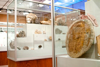 new displays to hold artifacts and mineral collection in the geology museum.