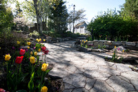 The beautiful gardens on campus during the 2014 Spring Semester.